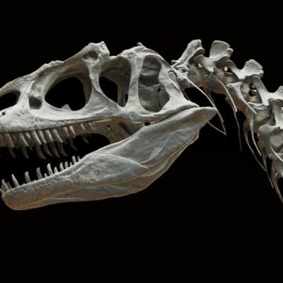 Así han cambiado los dinosaurios desde que estabas en la escuela