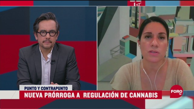 Foto: Nueva prórroga a la regulación de cannabis 20 Abril 2020
