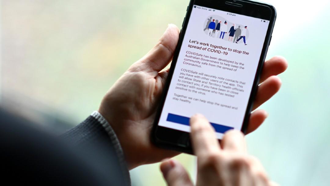 Fotografía que muestra a una persona utilizando una aplicación para detectar casos de coronavirus. (Foto: