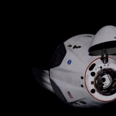 Fotografía de la cápsula de SpaceX en el espacio exterior. (@NASA)