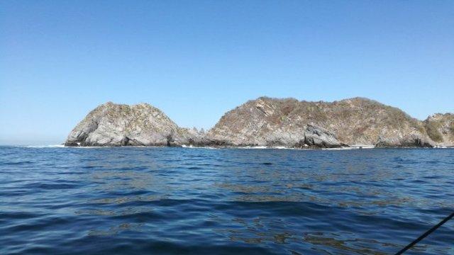 Detectan marea roja no tóxica en Manzanillo, Colima