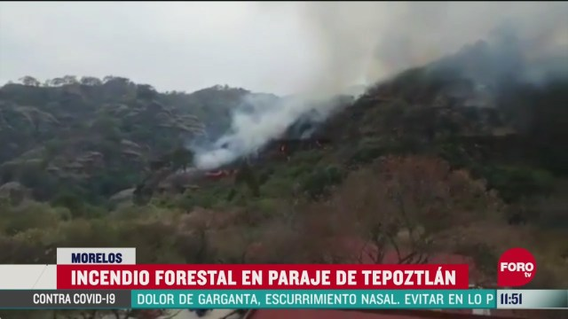 incendio forestal en paraje de tepoztlan