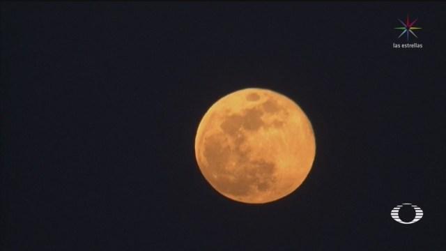 Foto: 'Luna de las Flores', la última superluna de 2020 7 Mayo 2020