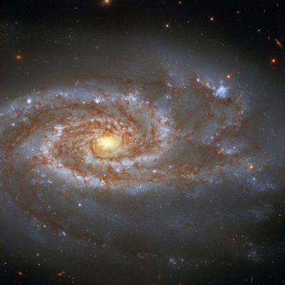 Descubren sistema planetario compacto más cercano al Sistema Solar