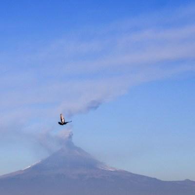 FOTO: Volcán Popocatépetl presentó 251 exhalaciones en último día, el 27 de mayo de 2020