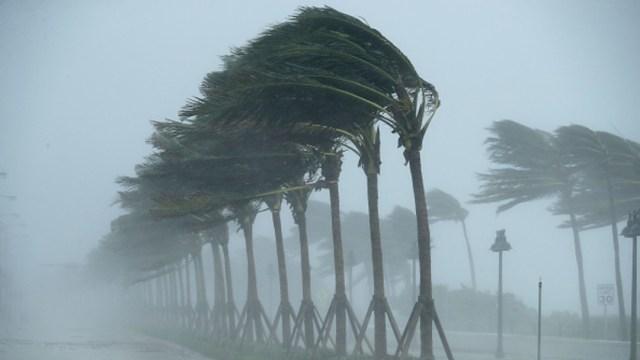 Imagen Ilustrativa: 'Cristóbal' retoma fuerza de tormenta tropical rumbo a EEUU, 4 de junio de 2020, (Getty images, archivo)