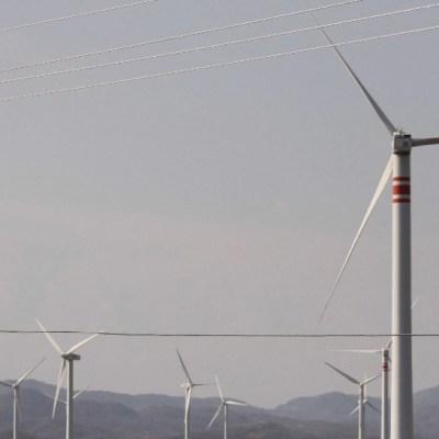 Sener 'combatirá' la resolución de un juez sobre las energías renovables