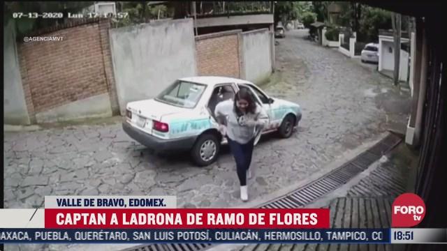 captan a mujer robando flores de una casa
