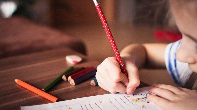 Cursos de Verano para Niños En Línea, Foto