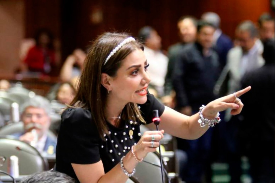 La diputada Nayeli Salvatori propone iniciativa llamada ñey antimemes