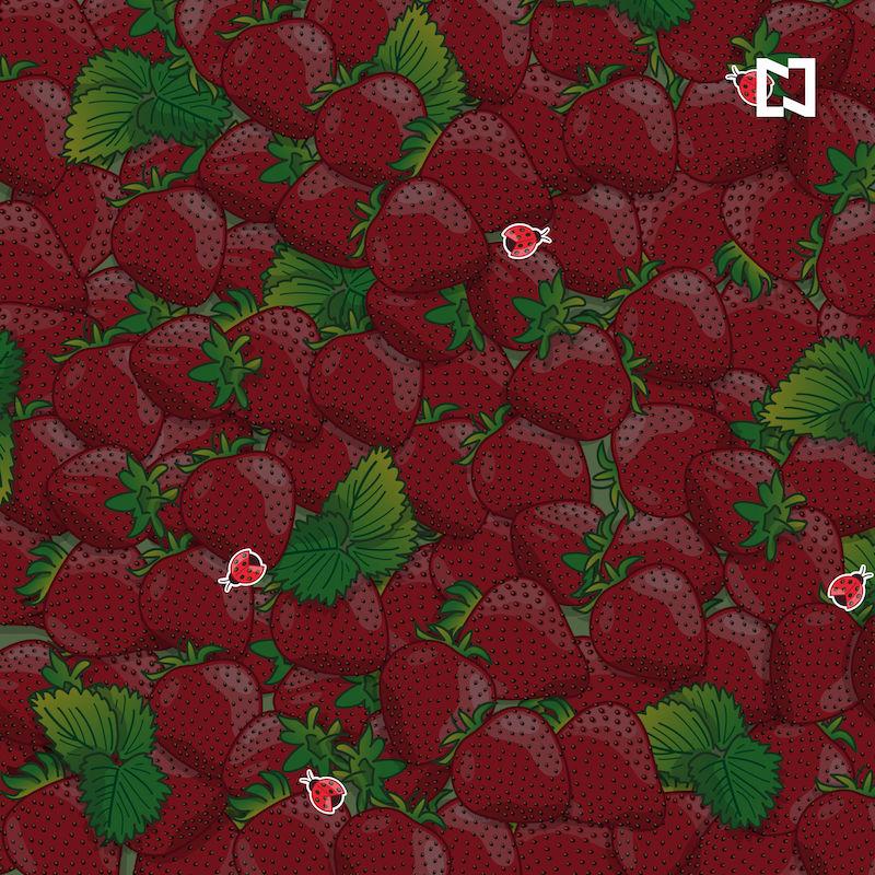 Encuentra 5 catarinas entre las fresas, ilustración