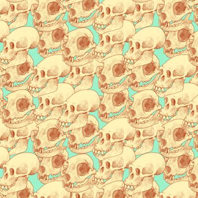 Reto visual: Encuentra los cráneos humanos