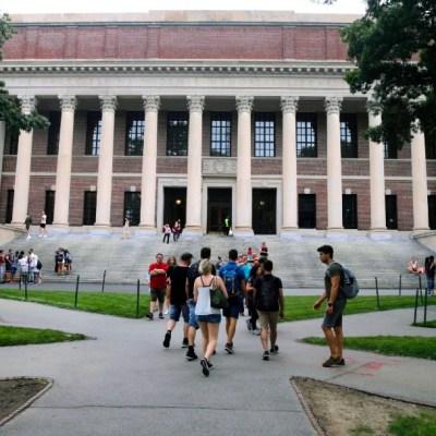 Harvard y MIT demandan al gobierno de EEUU por limitar visas de alumnos extranjeros