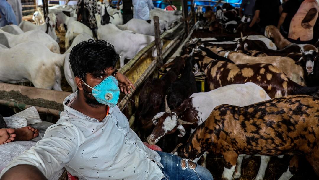 Hombre con cubrebocas en granja de cabras en Bombay, India
