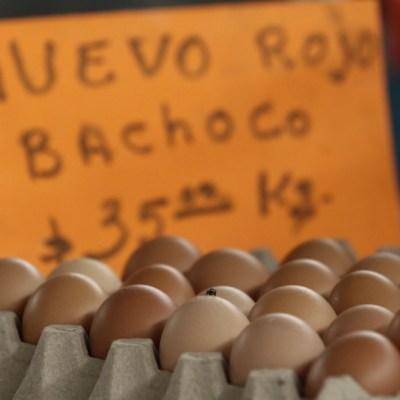Inflación interanual de México sube en junio más de lo esperado, reporta el INEGI