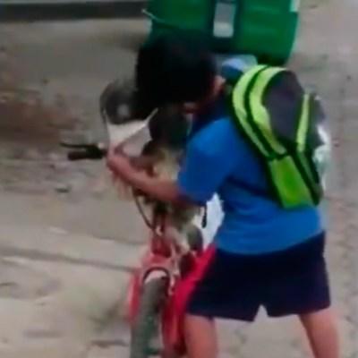 Video: Niño le pone cubrebocas a su perrito antes de salir de casa y se vuelve viral