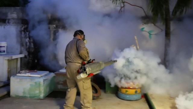 COVID-19 se suma a riesgo de dengue, zika y chikunguña
