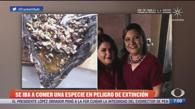 regidora de morena presume que comera tortuga en peligro de extincion
