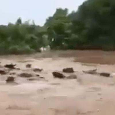 Video: Río se desborda tras el paso de