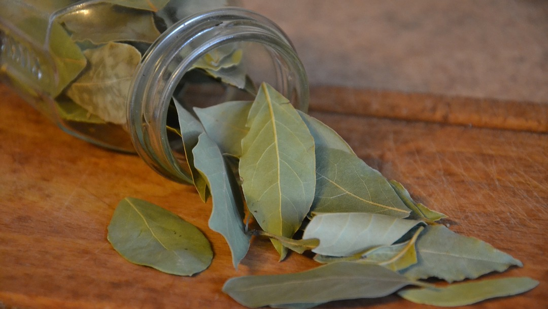 Beneficios del té de laurel