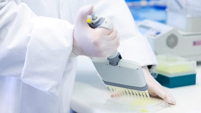 Bacteria escapa de laboratorio en China; hay más de tres mil enfermos de brucelosis