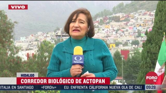 declaran area natural protegida el corredor biologico de actopan