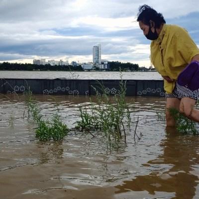 El tifón Maysak causa inundaciones y daños materiales en las dos Coreas