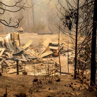 Incendio forestal en California deja al menos 15 muertos