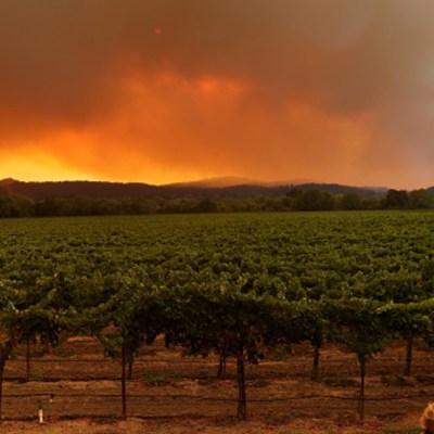 Helicópteros evacúan a 200 personas en California por voraz incendio forestal