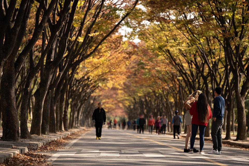 Imagen de un parque público