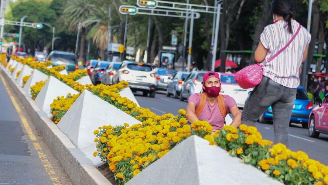 Flores de cempasúchil adornan la Ciudad de México