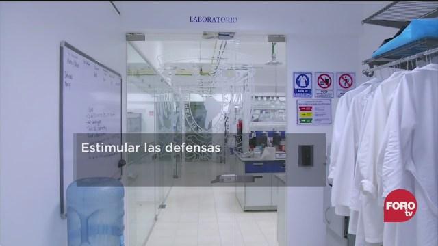conoce la vacuna mexicana contra el covid