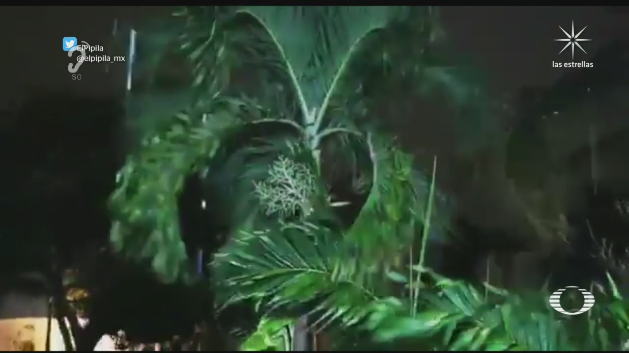 huracan zeta golpea quintana roo mantienen alerta en siete municipios