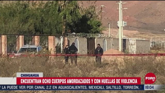 localizan ocho cuerpos abandonados en un predio en chihuahua