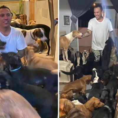 Video: Hombre protege a 300 perros callejeros y animales del huracán Delta refugiándolos en su casa
