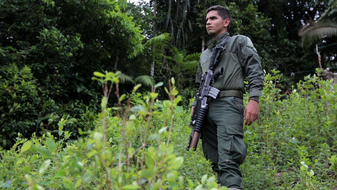 Cuatro cárteles mexicanos controlan tráfico de cocaína en Colombia, según funcionario de ese país