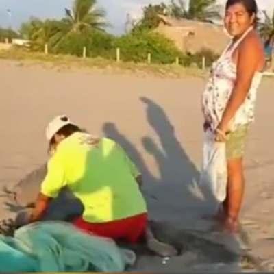 Captan a pareja saqueando nido de tortuga en Puerto Arista