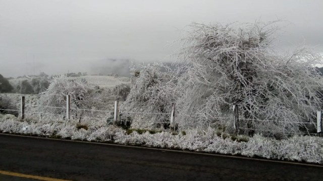 Pronostican temperaturas de -15 °Celsius en Chihuahua y Durango.
