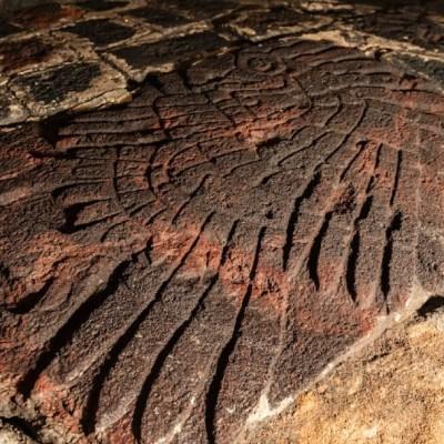 Bajorrelieve de águila real hallado en Templo Mayor data de hace más de 500 años