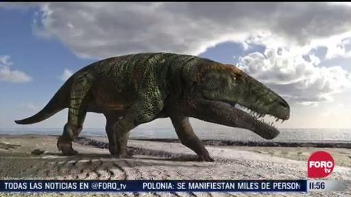 descubren huellas de presuntos reptiles gigantes en italia
