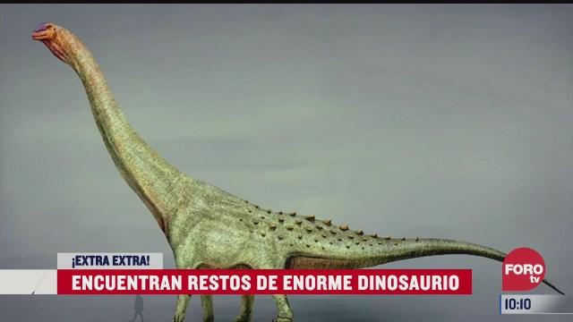 extra extra encuentran restos de enorme dinosaurio