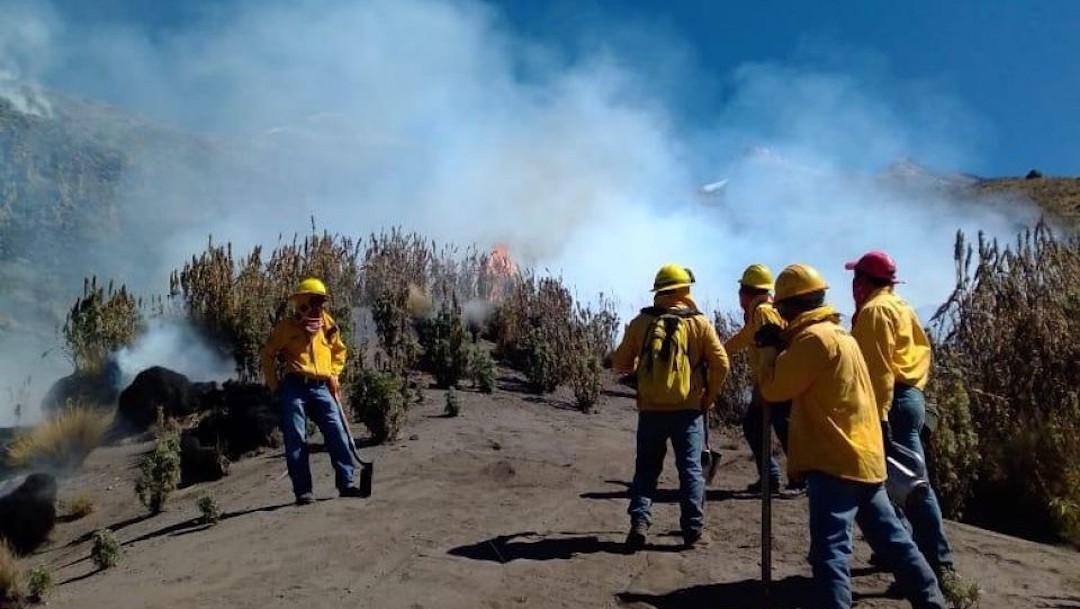 Fogata provocó incendio en el Parque Nacional Iztaccíhuatl.