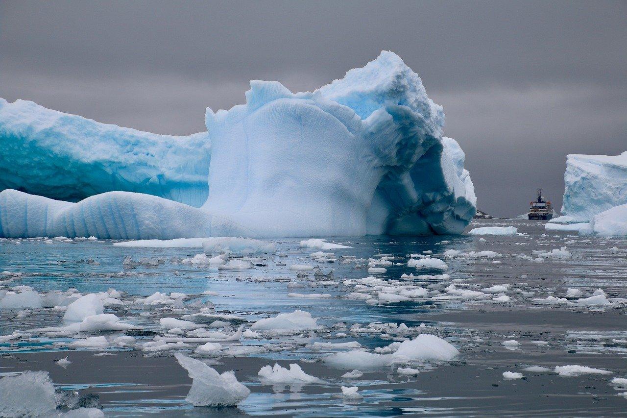 Descubren animales extraños debajo del hielo de la Antártida