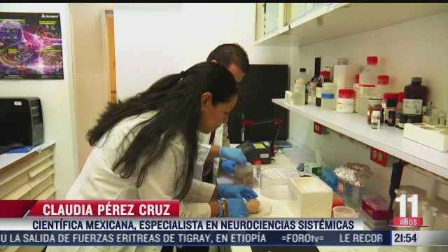 solo el 37 de las mujeres en mexico se dedican a la ciencia