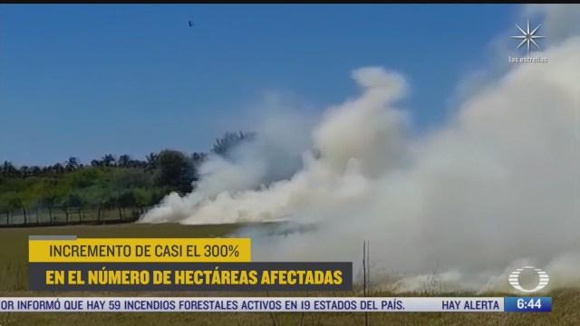 alerta por incendios forestales en oaxaca