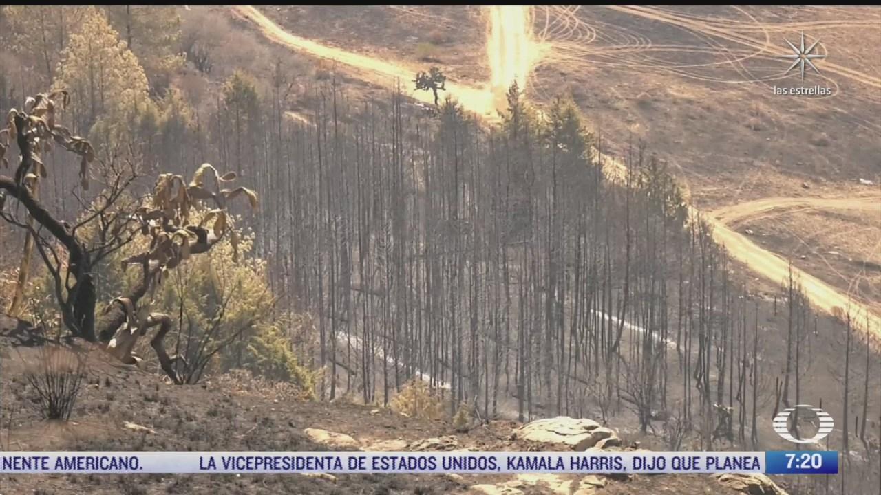 bosque de jilotzingo bajo asedio por incendios y desarrollos mobiliarios
