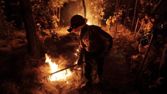 Incendio forestal de El Bosque de la Primavera (Twitter: @EnriqueAlfaroR)