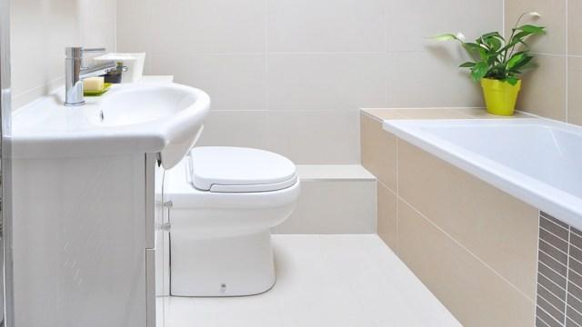 Cómo limpiar correctamente tu inodoro sin utilizar químicos