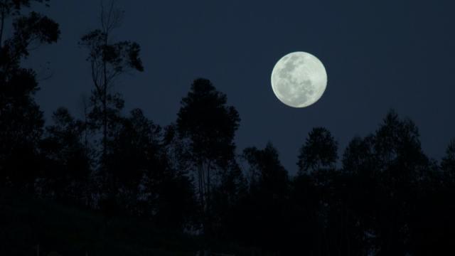 Superluna Rosa cuándo ver abril astronomía