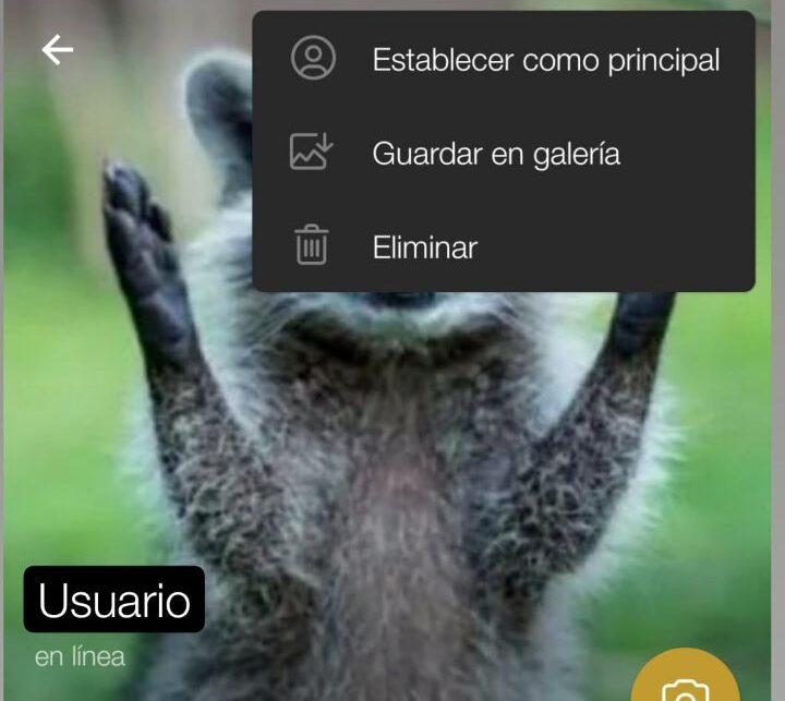 telegram mejorar privacidad
